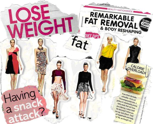 Essay on eating disorders and the media
