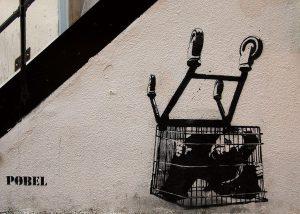 Consumer trap